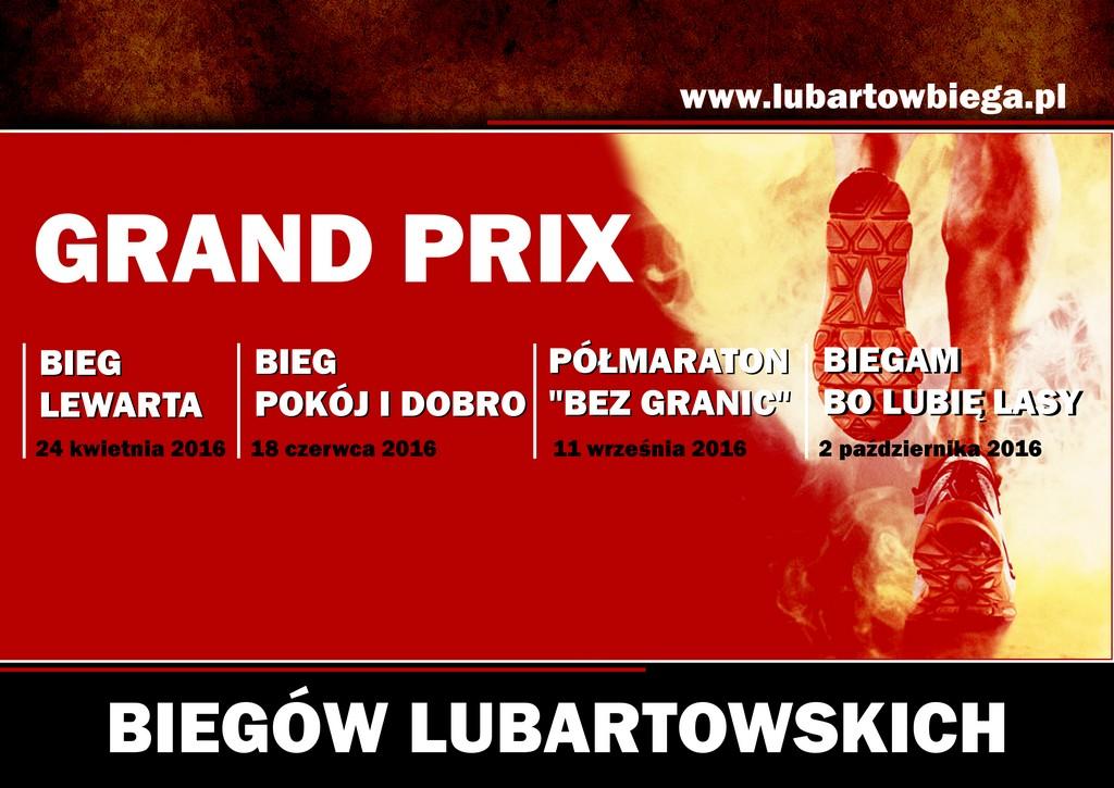 Grand Prix Biegów Lubartowskich